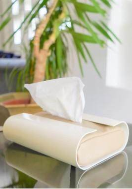 Mooj Tissue Box