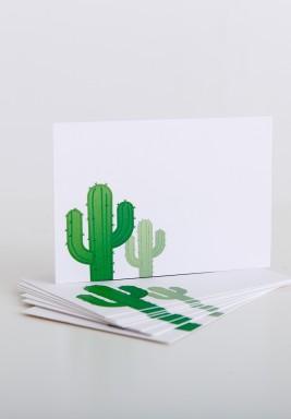Cactus - 50 Psc