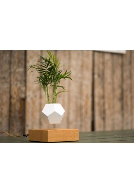 Lyfe Levitating Planter