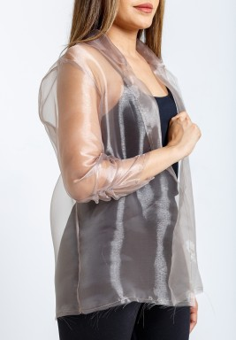 Nude Organza Long Sleeves Blazer