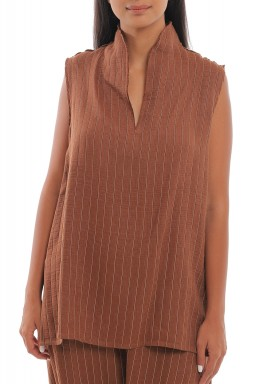 Brown Striped V-Neck Top