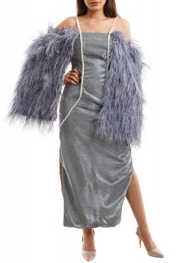 Silver Shimmery Feather Sleeves Gown